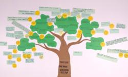 Instituto Brasil Orgânico apresenta andamento dos Grupos de Trabalho