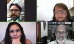 Bioinsumos: Desafios e perspectivas